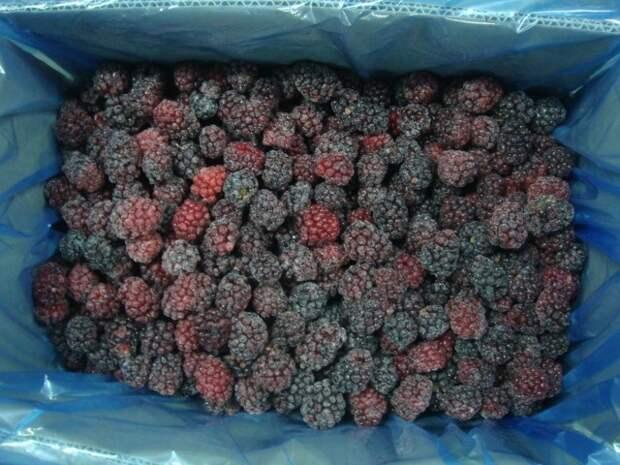Способы заморозки ягод Клубника ,смородина, заморозки ягод  в пакетах