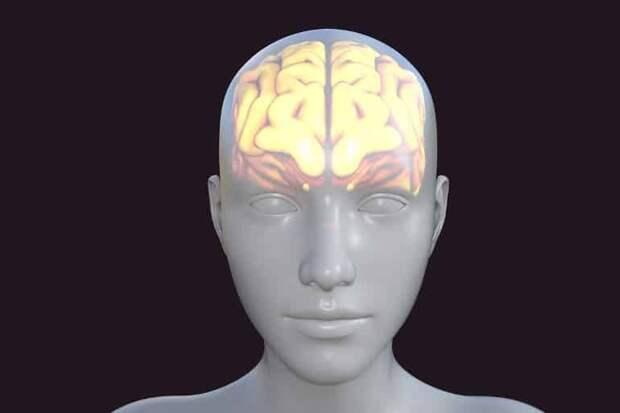 Что могут препараты против болезни Альцгеймера?