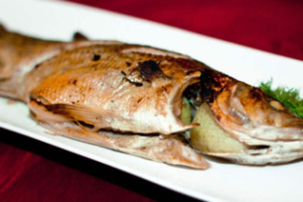 Готовим блюда из речного окуня