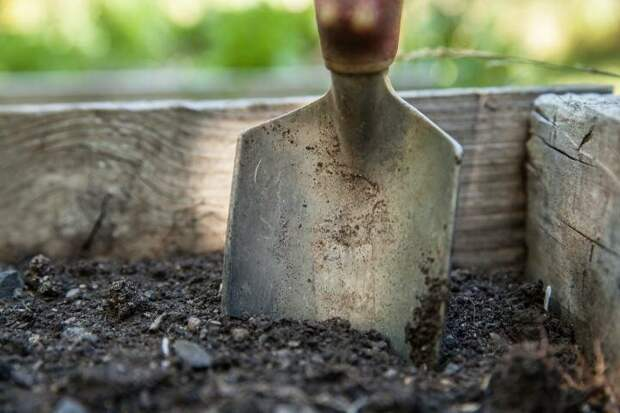 Подготовка почвы: как готовить почву для посадки растений. Каждый садовод должен это знать.