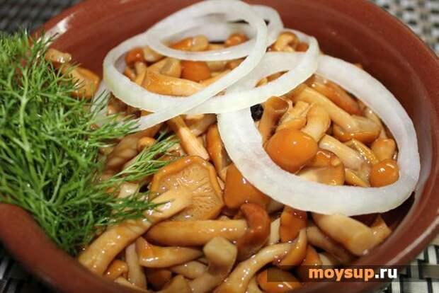 Вкусные салаты с маринованными опятами для начинающих хозяек