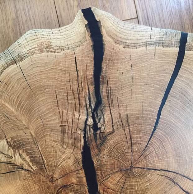 Парадокс мореной древесины: почему она не гниет в воде и может пролежать 500 лет