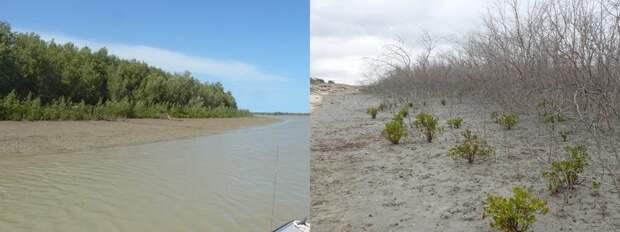 Кадры из Австралии, которые заставят по-новому взглянуть на всемирное потепление