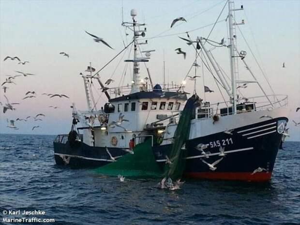 Немецкие рыбаки прикрывают укладку «Северного потока— 2» вдатских водах
