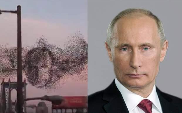 В небе над Нью-Йорком увидели портрет Путина
