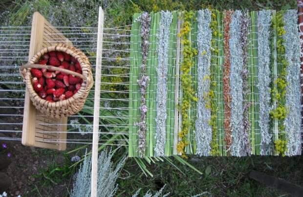 Ткачество травами - возрождение традиций глубокой древности