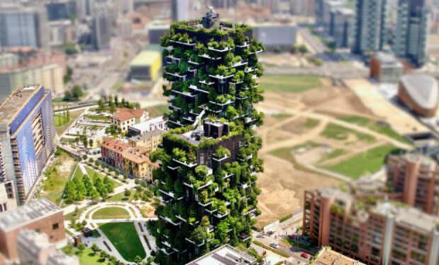 В Китае построили уникальные небоскребы с деревьями, но проект провалился. Дома превратились в джунгли