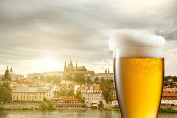 Какие страны стоит посетить коллекционерам и ценителям алкоголя?