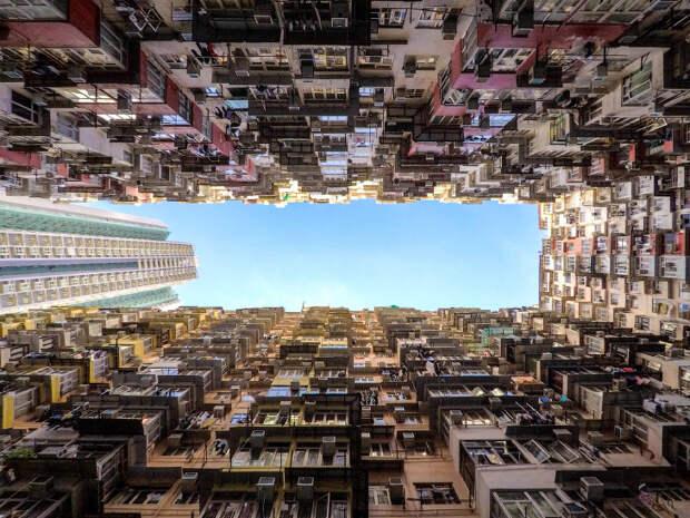 Муравейники Гонконга
