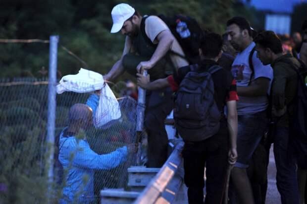 Венгрия намерена огородиться стеной от Сербии