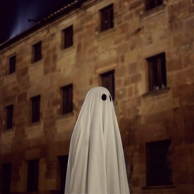 Мистер Бу - добрый призрак Инстаграма