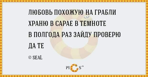 porowki12