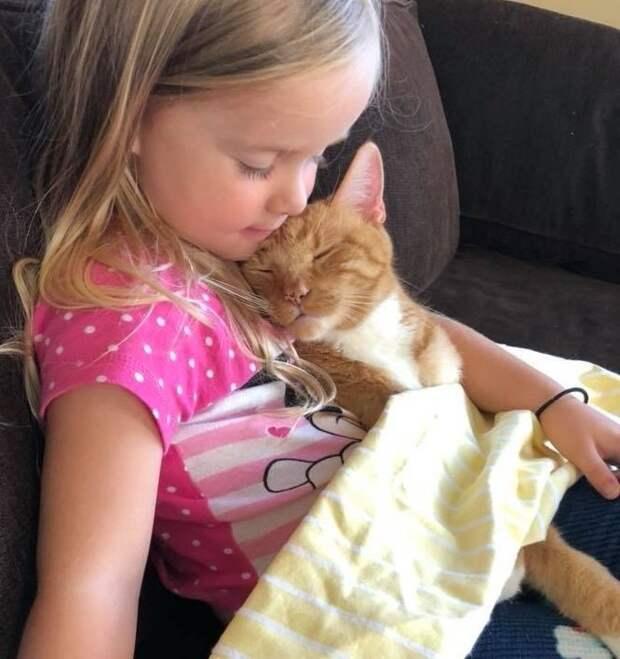 """""""Сказка для Бейли"""": нежная дружба кота и девочки"""