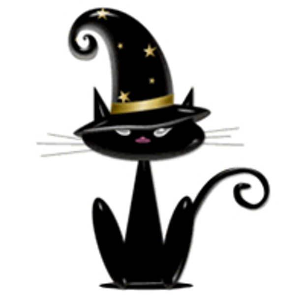 Кошки ведьмы