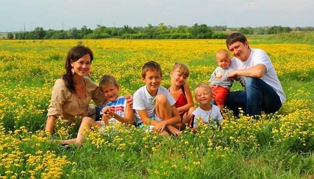 17,6 га областной земли передали в собственность Подольска для многодетных семей