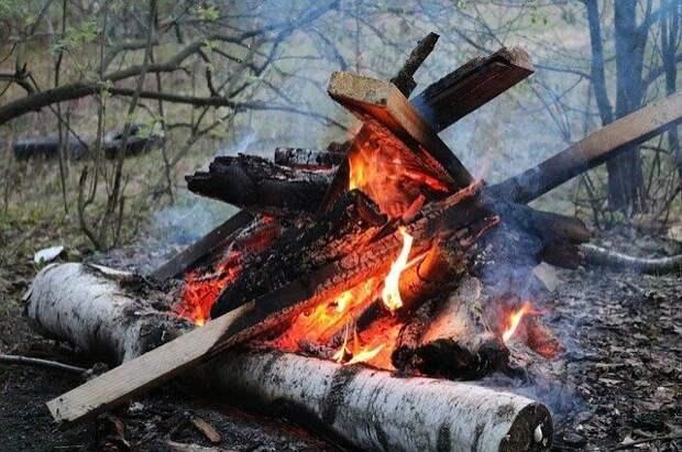 Баженов призвал ужесточить наказание за разведение костров в лесу