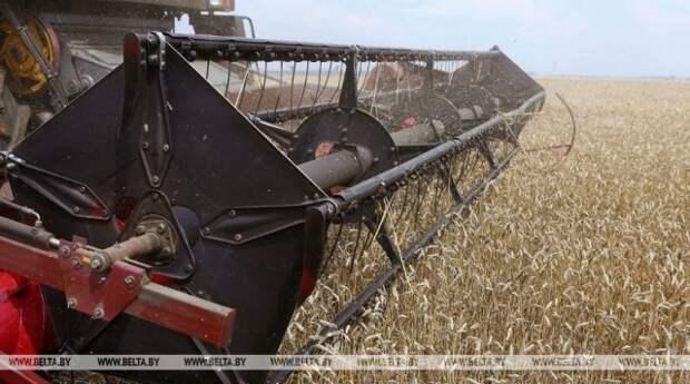 В Комитете госконтроля пояснили, почему в регионе недобор урожая.