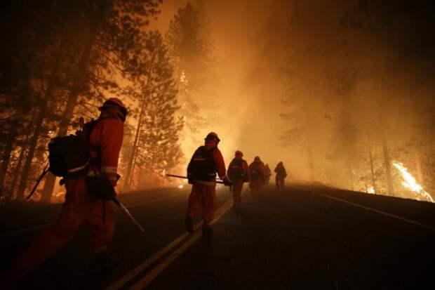 пожарные сильное фото
