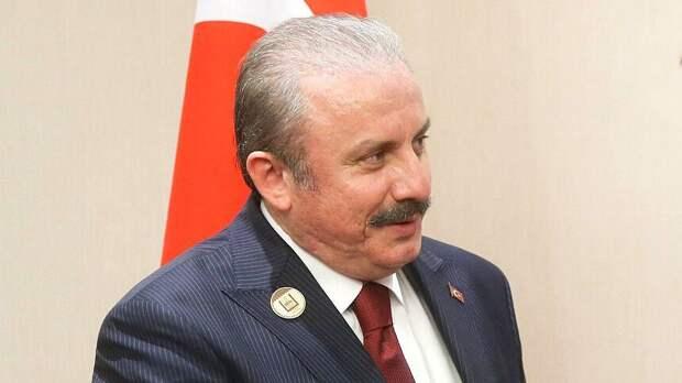 Спикер парламента Турции: богатства Сирии принадлежат сирийскому народу