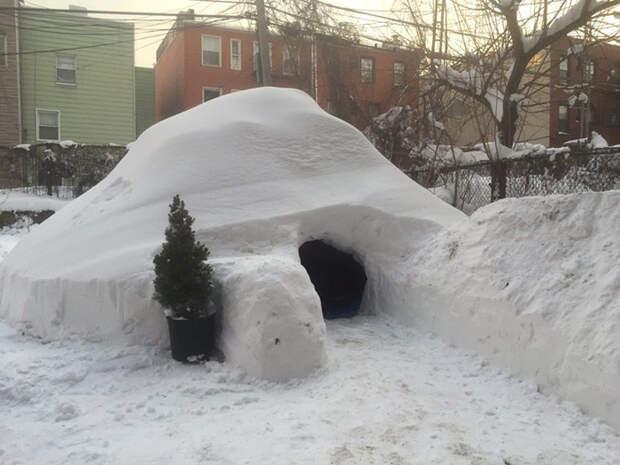 Идеальный внешний вид + вечнозеленый сад у входа  аренда, иглу, снег