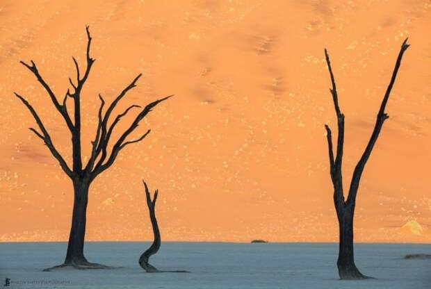 Места, которые выглядят так, словно они не с нашей планеты мир, природа