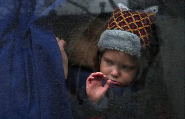 Украина лишит детей, вывезенных из ДНР, попечения родителей
