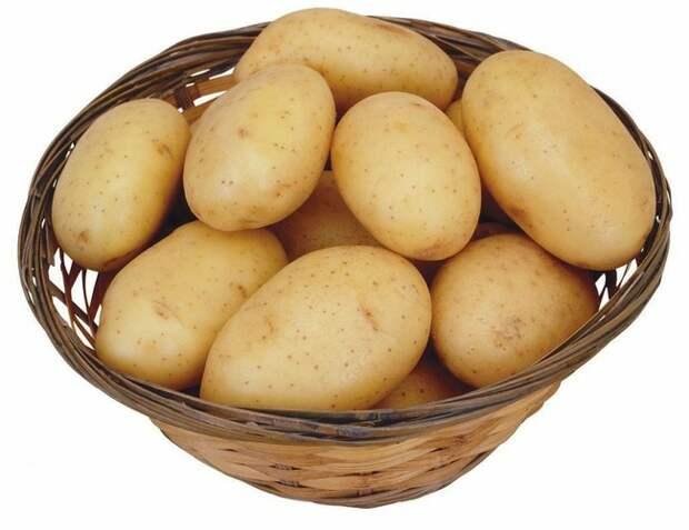 Тематический растровый клипарт: овощи - картофель, мытая картошка в кожуре, картофель в ведерке