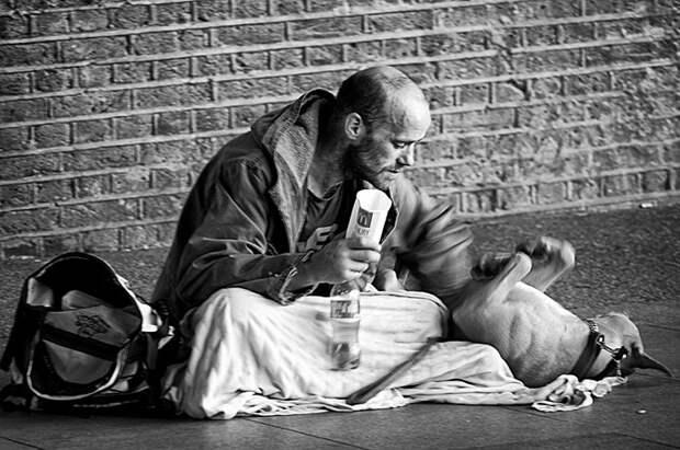 32. Бездомный играет с питомцем бездомный, любовь, собака