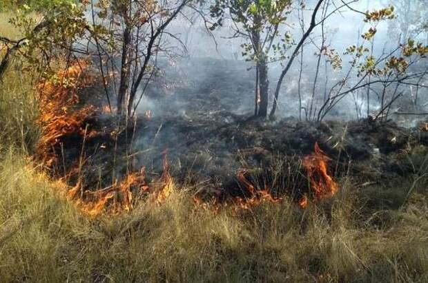 В садоводстве под Красноярском ночью горел сухостой на гектарах земли