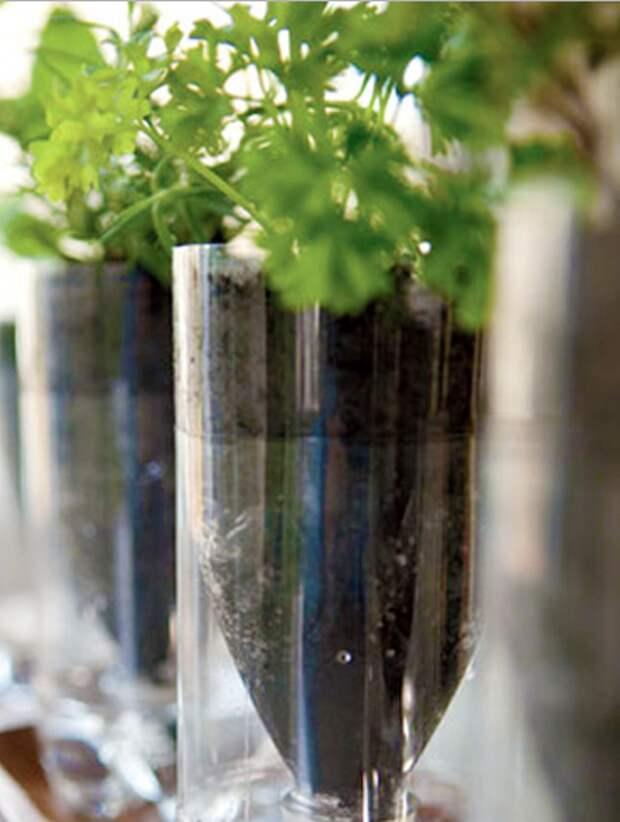 Сделай сам: самоувлажняемое кашпо для растений