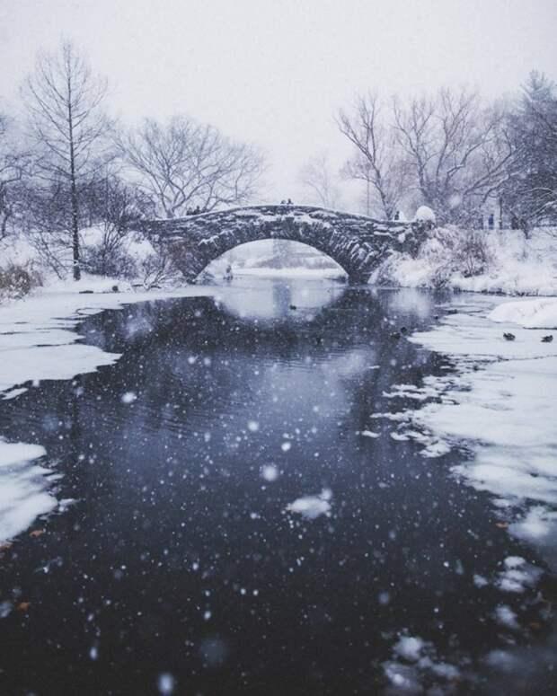 """Впечатляющие фотографии Нью-Йорка во время снежного шторма """"Джонас"""""""