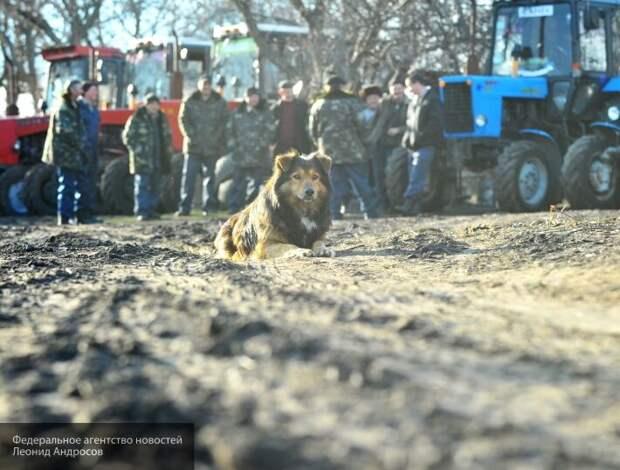 Ловушка фермеров Одессы ведет к бунту: выложились по полной, а денег нет