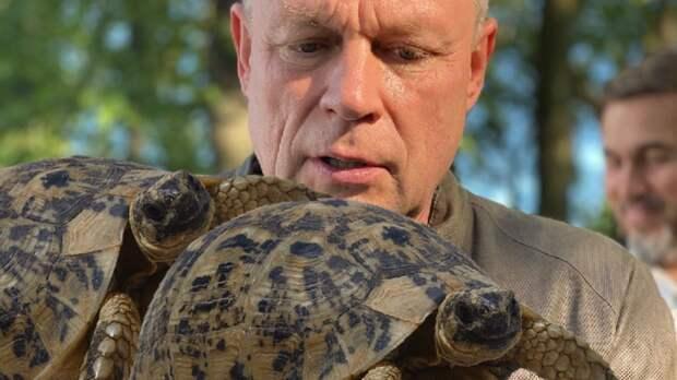 «Как черепахи вбрачный период»: Сергей Жигунов рассказал, что поразило его вРостове