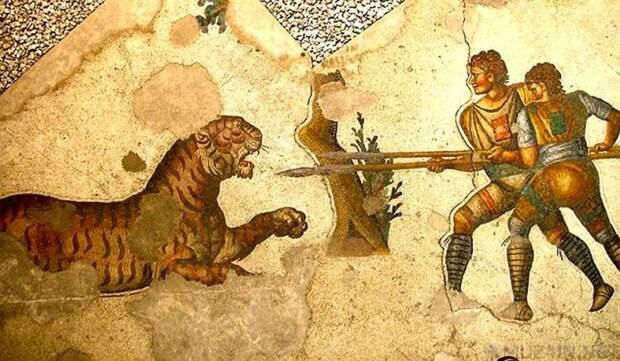 Типы римских гладиаторов
