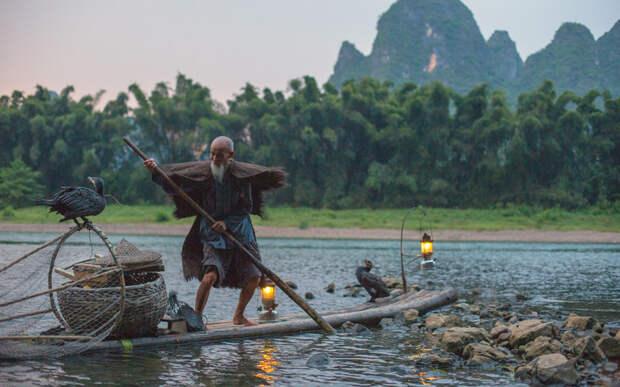 Рыбалка с бакланами