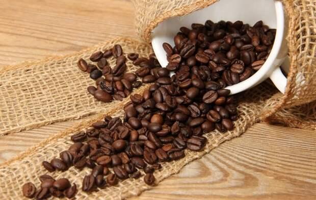 Мясников развеял самый популярный миф о кофе