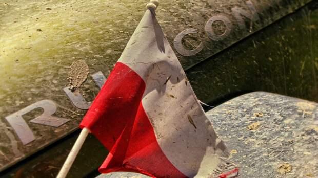 Польша ждет поддержки ЕС в восстановлении экономики после COVID-19