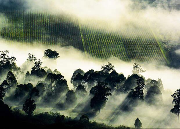 Облака застыли над самой землей (Joel Spooner, Австралия).