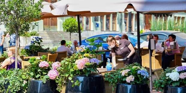 Власти Москвы опровергли сообщения о рекордных потерях ресторанов из-за QR-кодов. Фото: Ю. Иванко, mos.ru