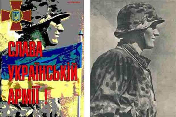 Депутат от партии Зеленского признал, что Украина чествует нацистов