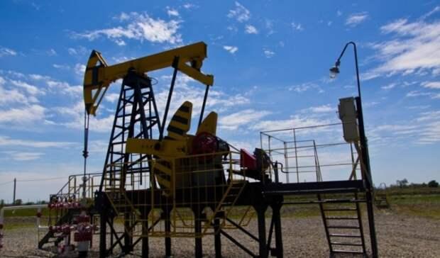 200млн рублей инвестирует «РН-Краснодарнефтегаз» врекультивацию земель до2025 года