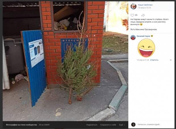 Фото дня: житель Свиблова в апреле смирился с окончанием новогодних праздников