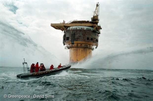 От Аляски до волгоградских степей. 10 фото Гринпис, изменивших мир