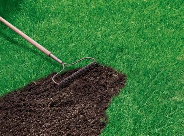 В проезде Соломенной Сторожки до 5 августа восстановят газон