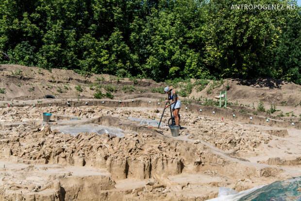 В Костёнках обнаружено новое жилище из костей мамонта