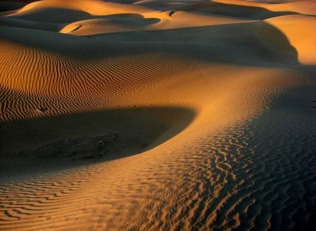 Пустыня Тар, Индия, Раджастан природа, пустыня