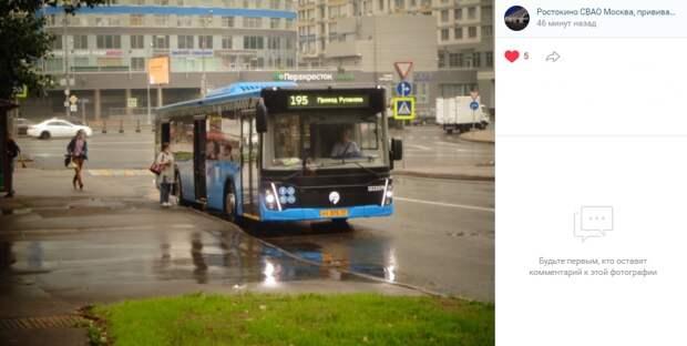 Фото дня: новые электробусы в Ростокине