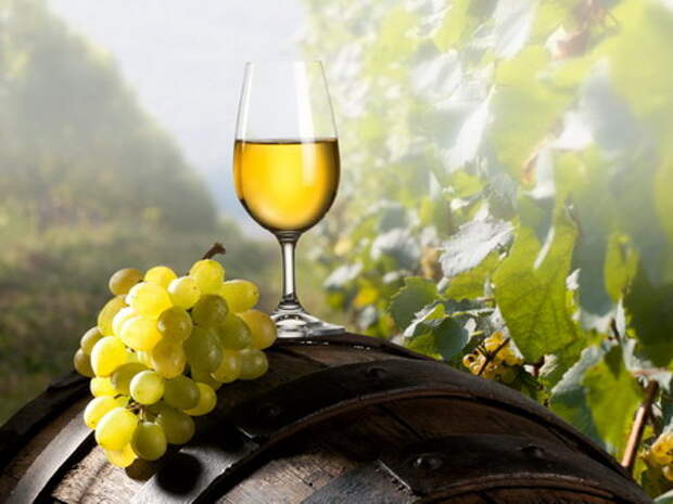 http://www.advantour.com/img/georgia/georgian-wine/georgian-wine.jpg