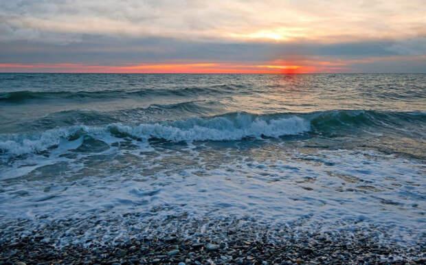 Море волнуется: как спасти уникальный водоем и его обитателей?