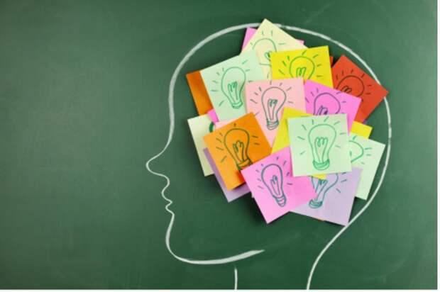 7 логических игр, которые развивают мозг и нравятся детям. Викторины - отличный вариант для совместного досуга